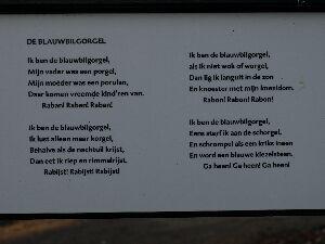 Buddingh gedichten